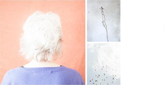 Images by Katrin Koenning from her series, 'Indefinitely'.